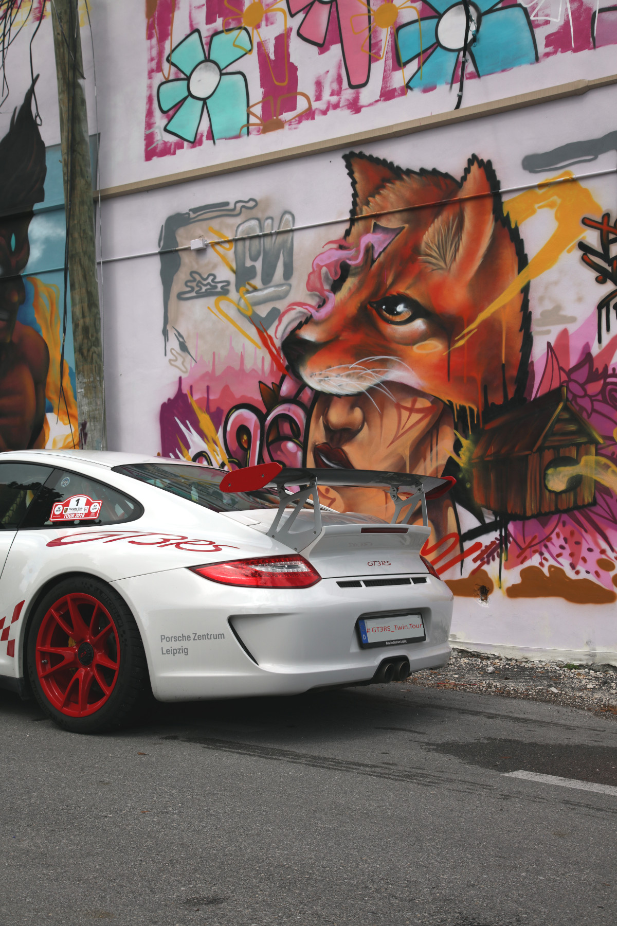 White GT3 RS with Zielrix Street Art (02)