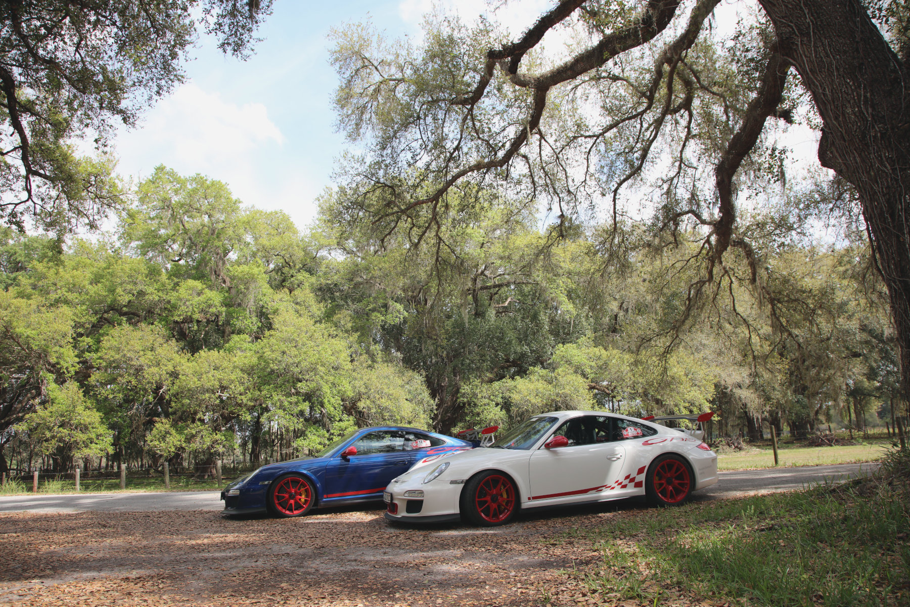 Live Oak and 911 GT3 RS