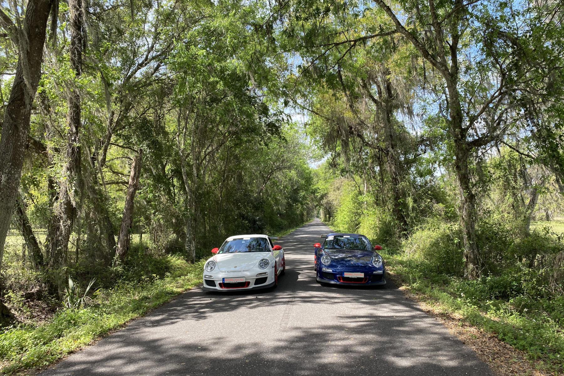 911 GT3 RS under live oaks