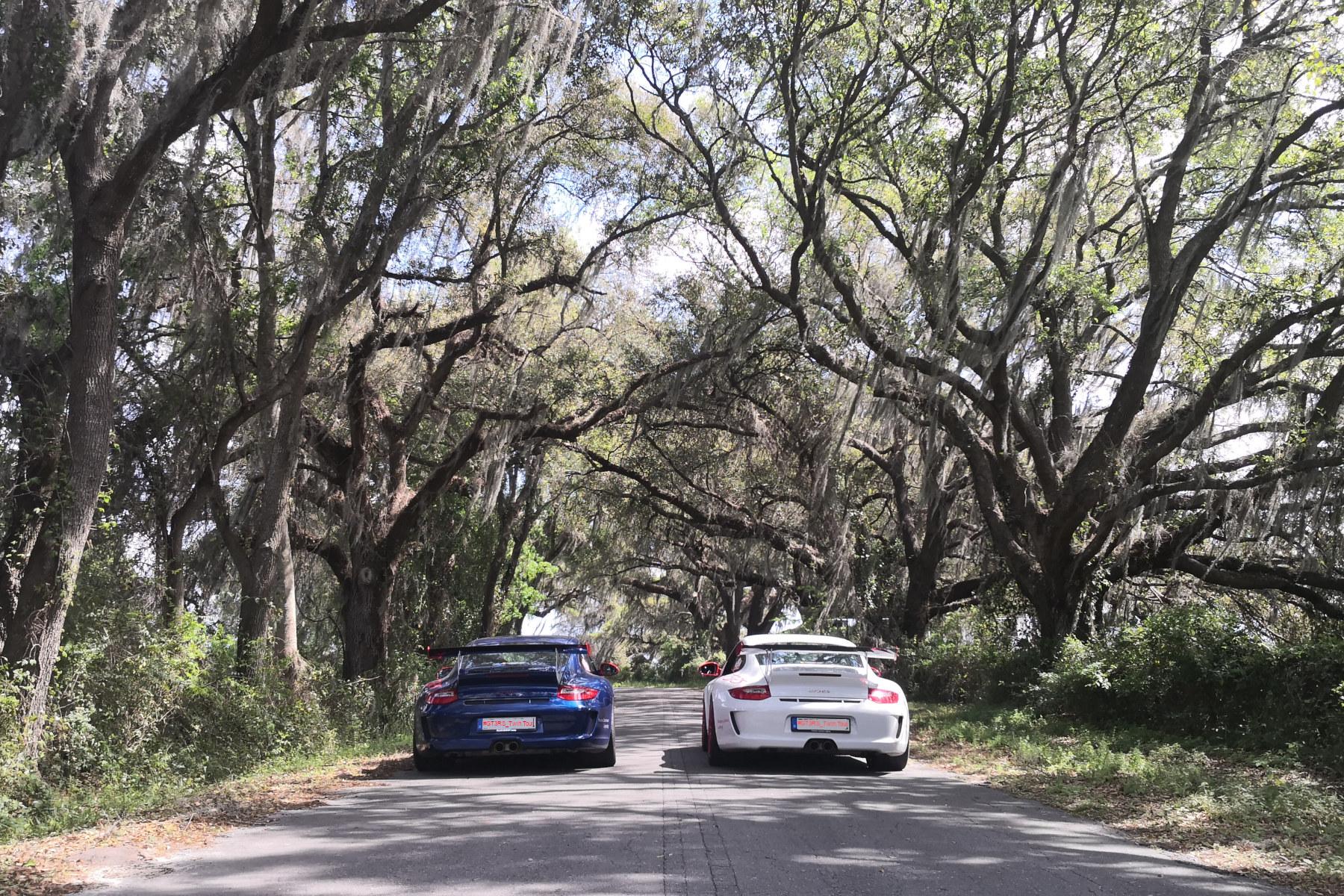 911 GT3 RS under live oaks (2)